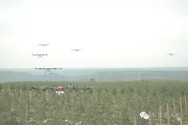 韦加植保无人机在《第一届世界苹果大会》户外篇