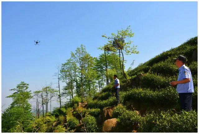无人机巡山护林&助力研究秘鲁神秘雕刻2