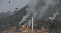无人机应用--森林火灾监测