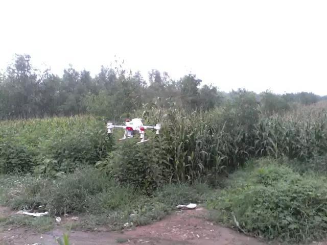 山西祁县西六支王村使用无人机喷洒农药现场